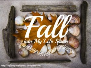Fall into My Life Space Moments