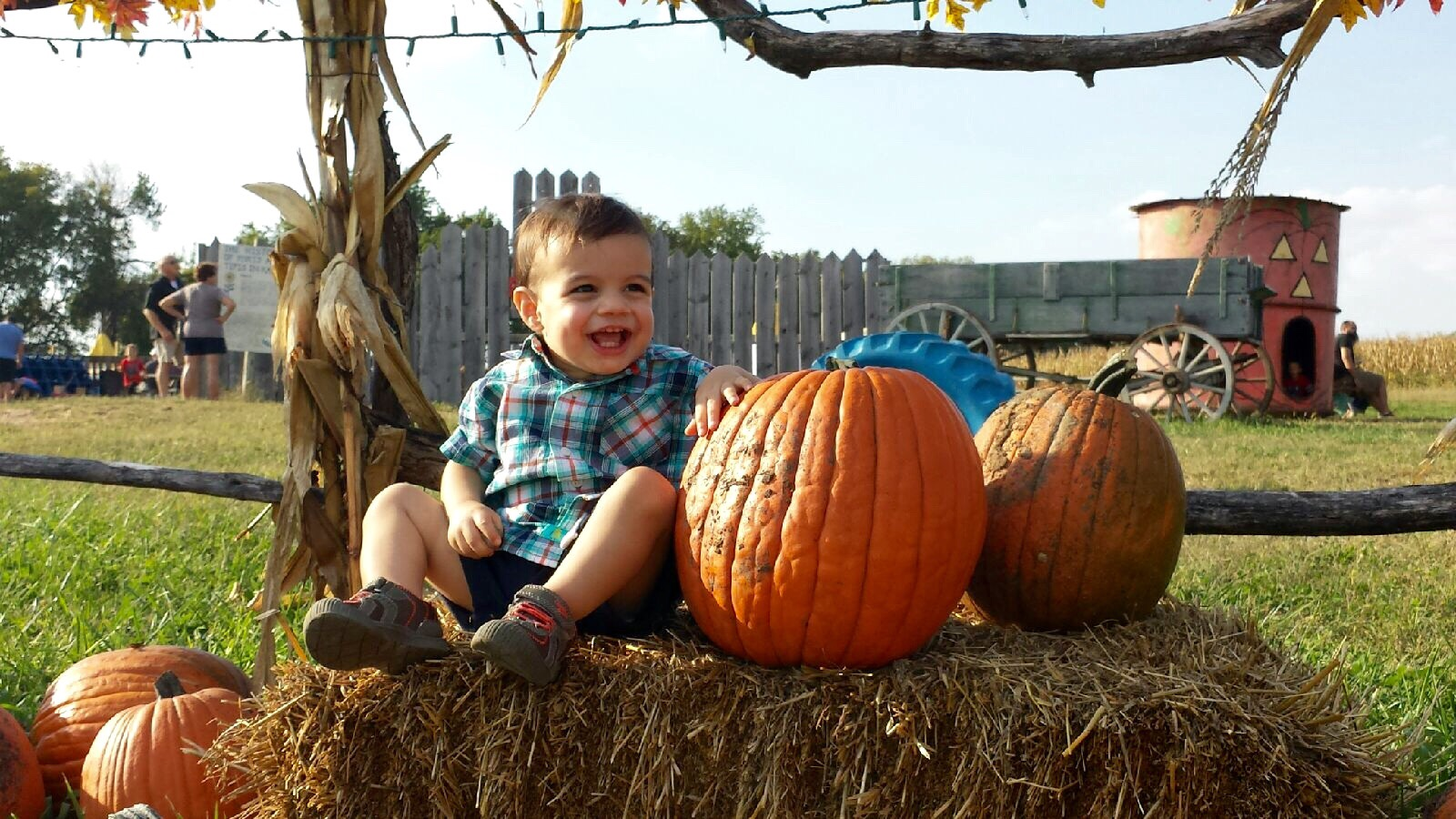 Toddler's First Pumpkin Patch! | {My Life Space Moments} 2014