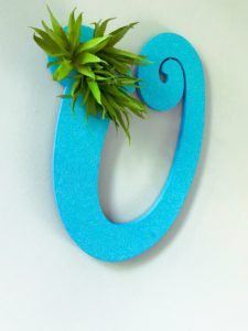 DIY Ocean Air Plant Wreath