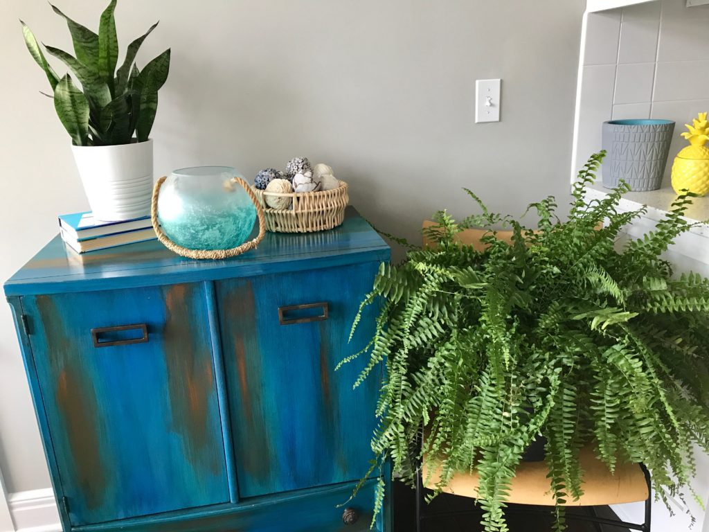Fern in its Place of Honor | My Life Space Moments